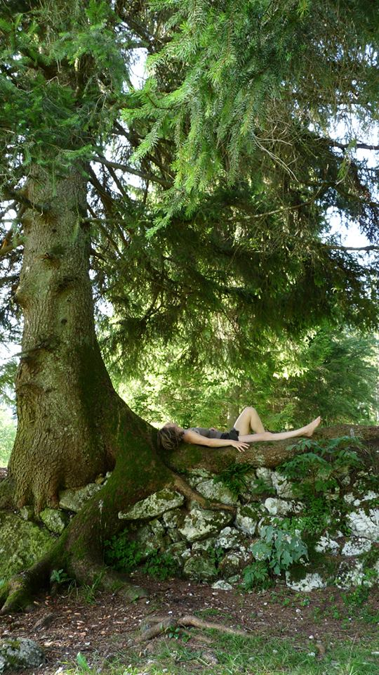 aude arbre Genin