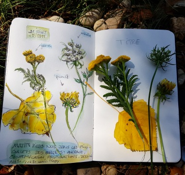 carnet fleuri